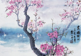 Chinese Painting of Cherry Blossoms