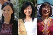 Liviana Zheng, Juliana Wijaya, and Desiana Pauli Sandjaja.