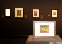 Exhibit Photograph