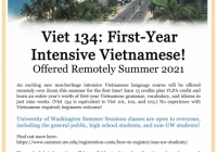 Flyer explaining the summer intensive Vietnamese class.